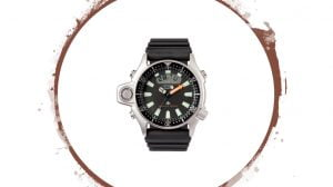 Citizen Aqualand JP2000
